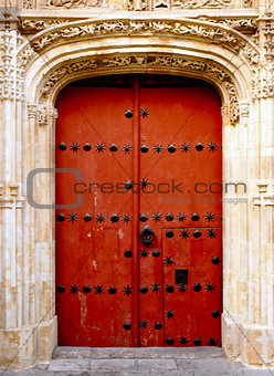 Ancient spanish door