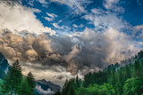 Cloudy sky over the forest