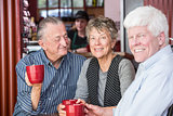 Smiling Mature Woman in Coffee House