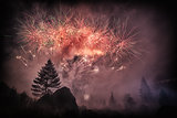 Fireworks in the forest