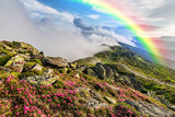 Landscape with Flowers and Rainbow