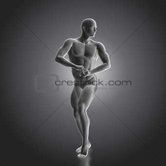 3D male bodybuilder figure