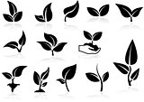 Plants Icons Set