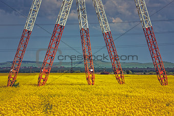 Power pole pylons in rapeseed field