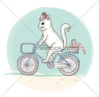 Cat on the bike
