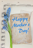 Muscari flowers and paper note
