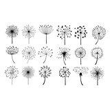 Dandelion Fluffy Seeds Flowers Set