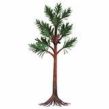 Permian Cordaites Tree