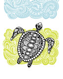 Tortoise ornate, zentangle for your design