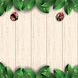 Ladybugs and green leaves on wooden background.