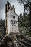 Memorial to Unknown Soldier WW1