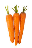 Three carrots isolated on a white background