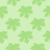 The symmetric background. Green leaves