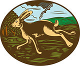 Wild Hare Rabbit Running Oval Woodcut