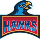 Hawk Head Side Retro