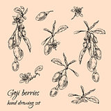 Goji berries set