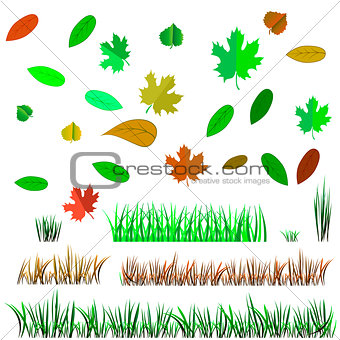 Autumn Leaves and Autumn Grass