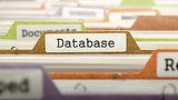 Database on Business Folder in Catalog.