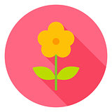 Yellow Flower Circle Icon