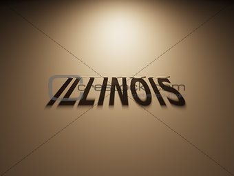 3D Rendering of a Shadow Text that reads Illinois