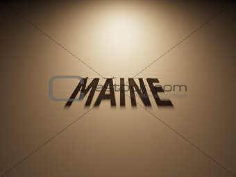 3D Rendering of a Shadow Text that reads Maine