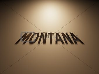 3D Rendering of a Shadow Text that reads Montana