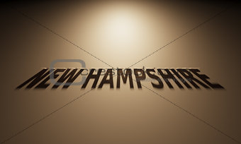 3D Rendering of a Shadow Text that reads New Hampshire
