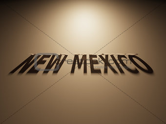 3D Rendering of a Shadow Text that reads New Mexico