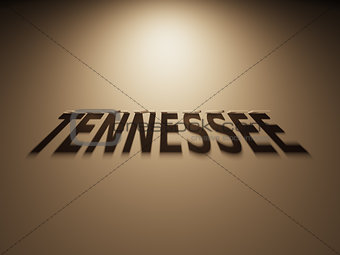 3D Rendering of a Shadow Text that reads Tennessee