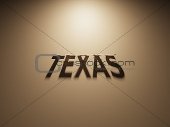 3D Rendering of a Shadow Text that reads Texas