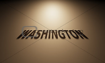 3D Rendering of a Shadow Text that reads Washington