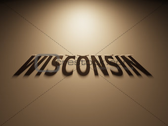 3D Rendering of a Shadow Text that reads Wisconsin