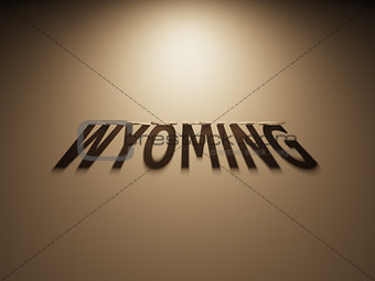 3D Rendering of a Shadow Text that reads Wyoming