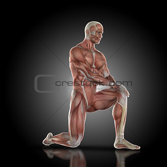 3D render of a medical figure with muscle map