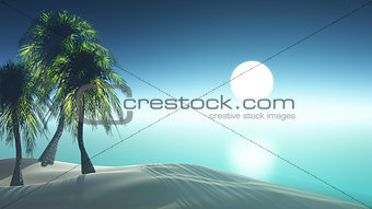 3D render palm tree island