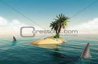 Small island with sharks