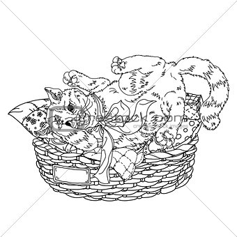 Sketch illustration of playful cats. Sleeping, sitting, looking back, playing