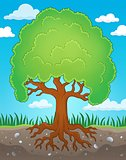 Tree with roots theme image 2