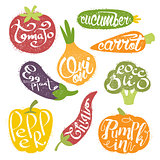 Names OF Fruits In Fruit Shaped Frame Collection