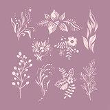 Hand Drawn Fantastic Plant Monochrome Set