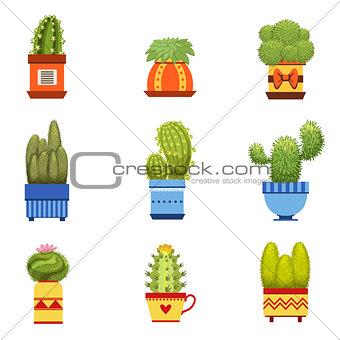 Cactus In Pot Set