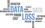 word cloud - data loss