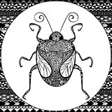 Coloring page of  Balck Bug, zentangle illustartion