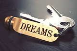 Keys to Dreams. Concept on Golden Keychain.