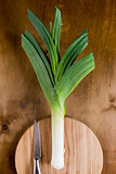 Leek on a wooden wall