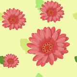 gerbera flowers seamless on a light. vector illustration