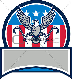 American Eagle Clutching Towing J Hook Circle Retro