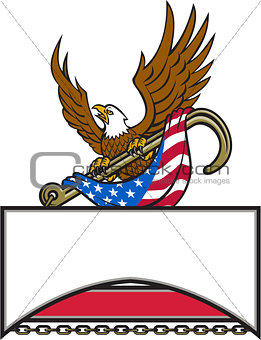 American Eagle Clutching Towing J Hook Flag Retro