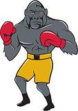 Gorilla Boxer Boxing Stance Cartoon