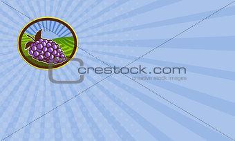 Business card Grapes Vineyard Farm Oval Woodcut